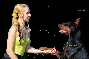 Sitter meets Dog